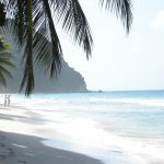 beach and palm trees on what to pack for a bvi yacht charter