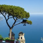 view from the Amalfi coast on a cliff over the water with a tree