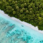 Ariel view with trees and white sandy beaches on a Maldives yacht charter