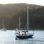 sailing boats in the Whitsundays